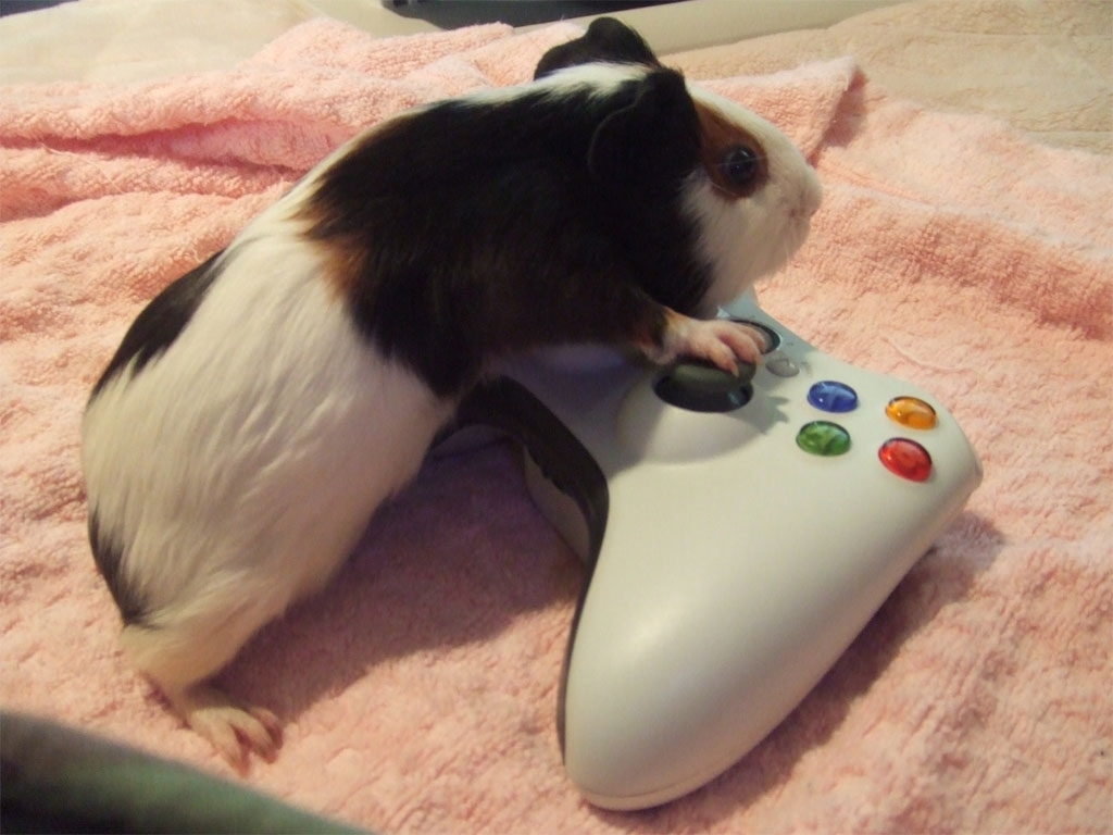 Just playing video games 2